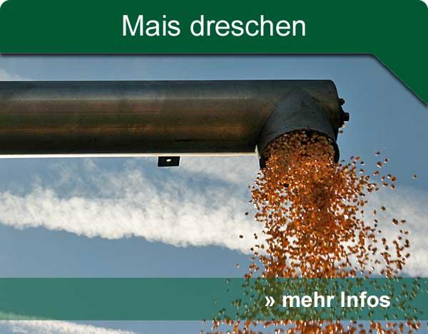 hp_mais_dreschen