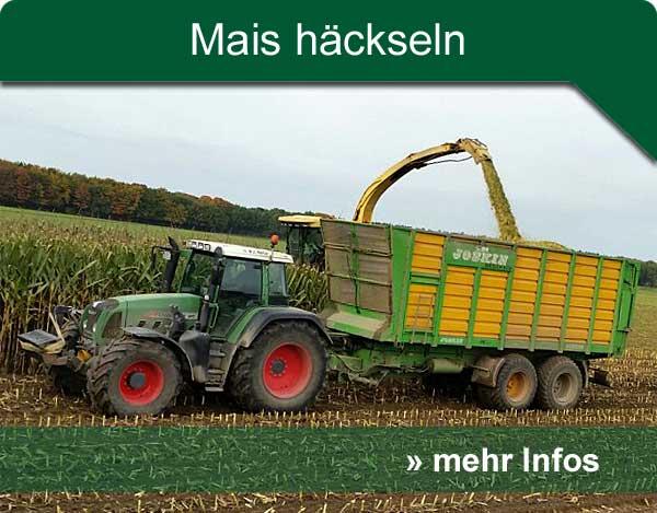 hp_mais_haeckseln