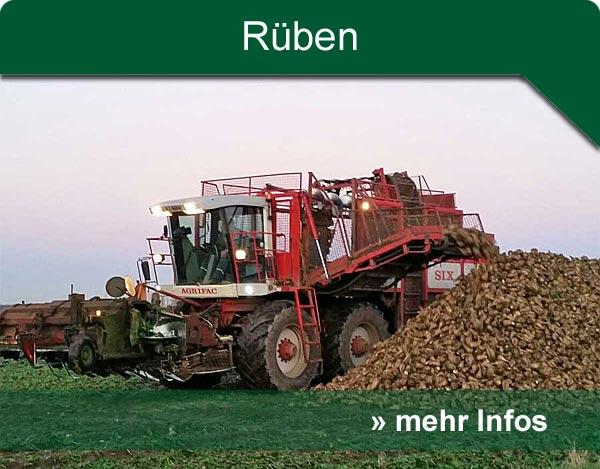 hp_rueben